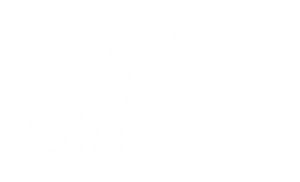 Bluebell IT Solutions logo